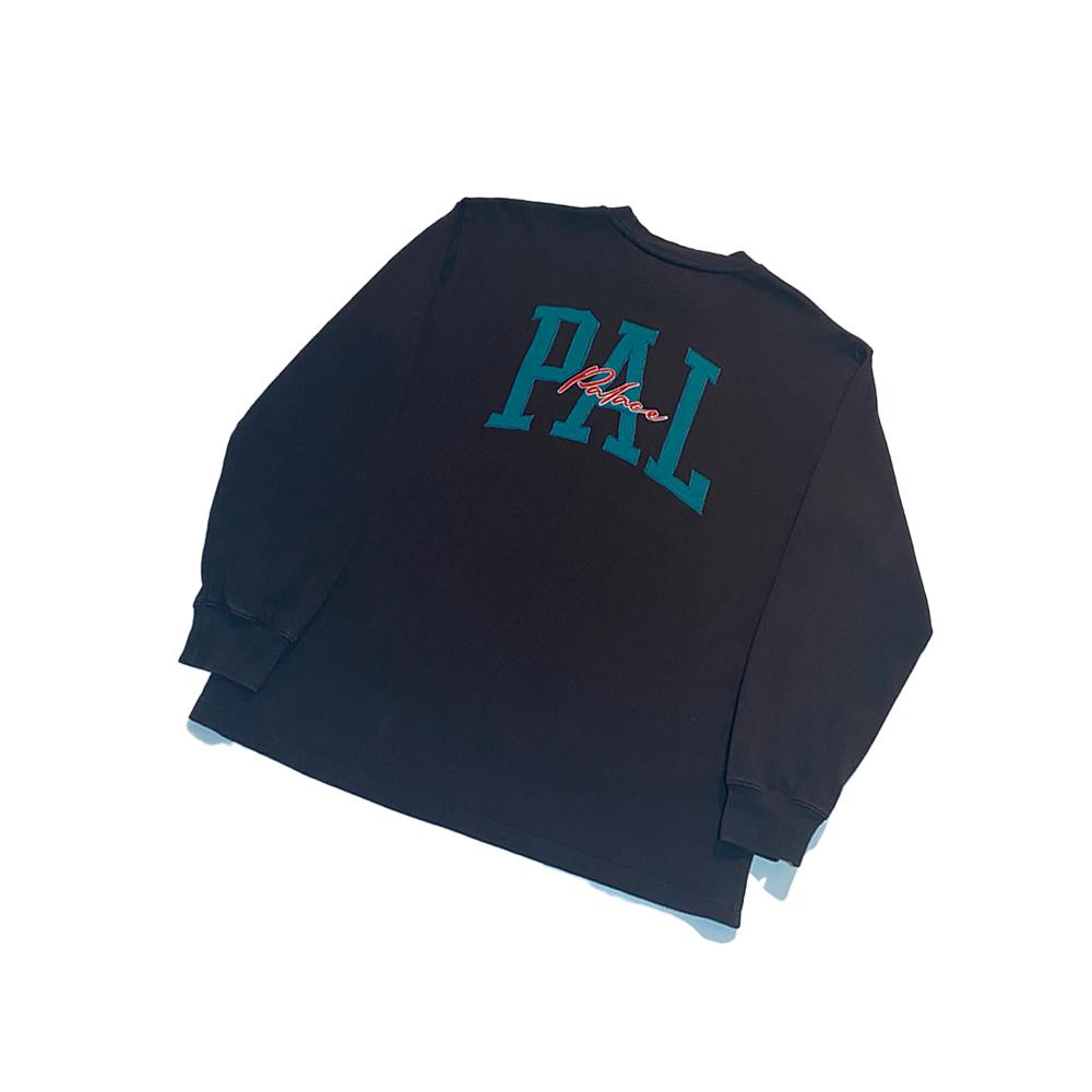 Ace_0001_palace ace longsleeve black large used back straight copy
